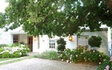 fig tree cottage greyton